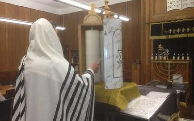 Rabbi Daniel Wasserman of Shaare Torah reads from a Sephardic Torah, which he recently fitted with a traditional case he brought back from Israel. The scroll is used at Shaare Torah's new Sephardic minyan, which currently meets once a month. (Photo courtesy of Avram Avishai)
