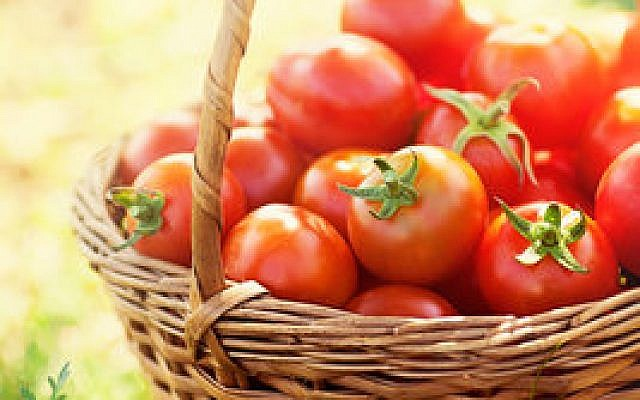 Versatile by nature, tomatoes complement meat, fish and  most any produce.