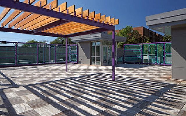 From top to bottom, the new Friendship Circle building boasts a fun-filled, inclusive environment. The facility's green roof is a favorite spot for many members, serving as a serene outdoor area in the bustling business district of Squirrel Hill. Throughout the summer, The Friendship Circle has begun the process of upgrading this space. A rooftop garden has been added and there are plans to install a small climbing wall sometime in the next year. The roof has a spectacular view of Murray Avenue, enhanced by a quiet distance from the cars and buses speeding past.  Photos by Howard Doughty/Immortal Images