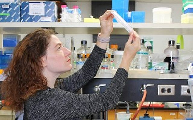Joanna Slusky, a professor of molecular biosciences and computational biology at the University of Kansas, works in her lab.  Photo by Sarah Mullinax