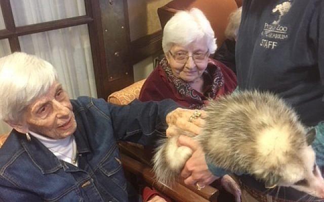 (Photo courtesy of Jewish Association on Aging)