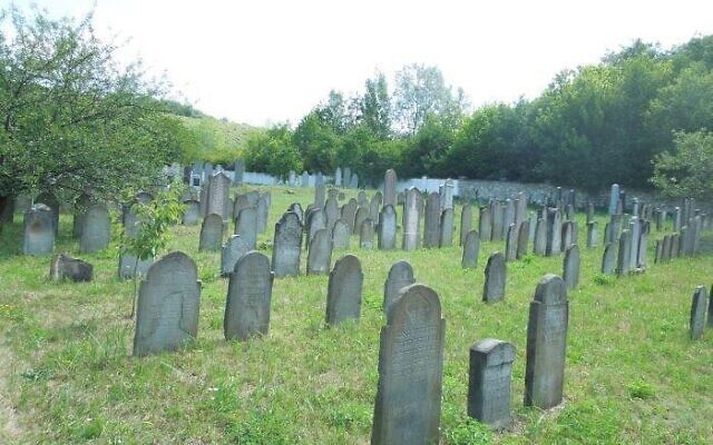 The Berehove (Beregszász) Cemetery (partial view) is maintained by Joseph Vays and Hugo Guttman, both descendants with loved ones buried there. The cemetery has almost 2,000 burials.  Photo Copyright Sub-Carpathia Genealogy®