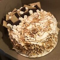 Mayo recently purchased a baker's torch, which she's used on recipes like her S'mores Cake. Photo by Elena Mayo.