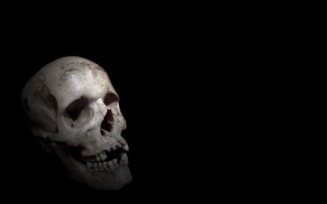 """""""Skull"""" by Benedict Francis (Licensed under CC BY 2.0)"""