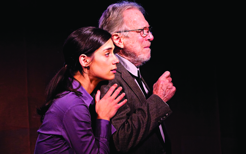 Andi Potamkin and Greg Mullavey star in the American play