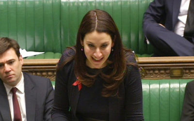 Shadow Mental Health Minister Luciana Berger.