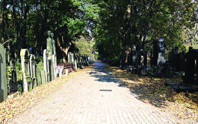 Graves at Okopowa Street Jewish Cemetery in Warsaw, Poland.