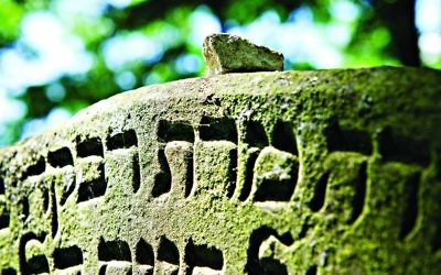 An old Jewish headstone in a cemetery