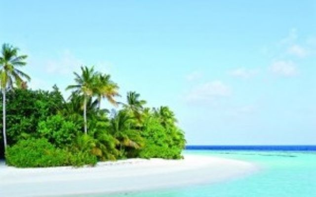 One of the stretches of beach in the Maldives
