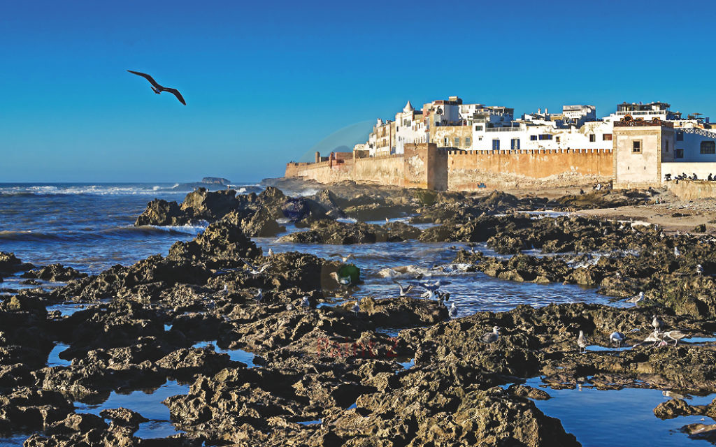Essaouira's famous fortifications dominate the town