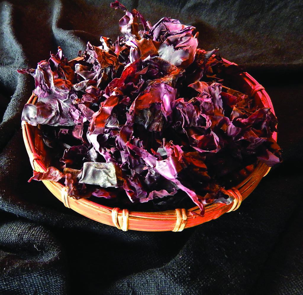 A red algae seaweed known as dulse tastes like bacon
