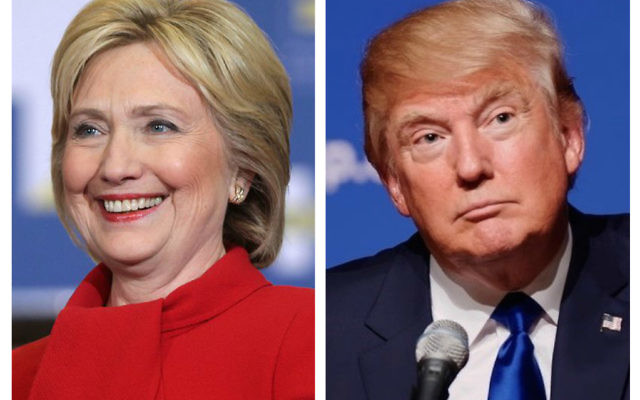 Hillary Clinton and Donald Trump are vying for American votes