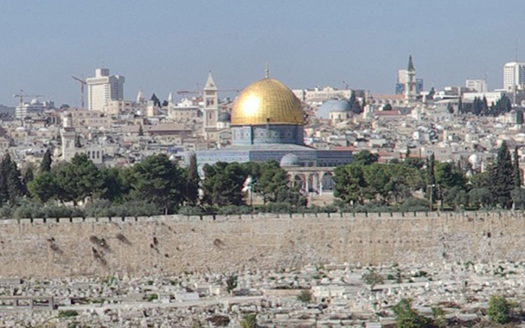 Jew Detector: Temple Mount Resolution 'denies Jewish History'