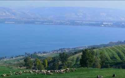 The Kineret - or Sea of Galilee