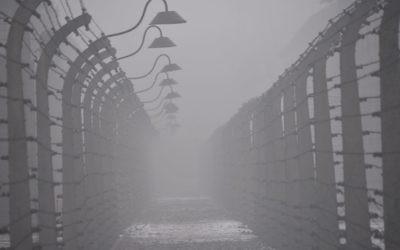 Posts and barbed-wire at Auschwitz I -   Photo by Pawel Sawicki © Auschwitz-Birkenau State Museum - Musealia