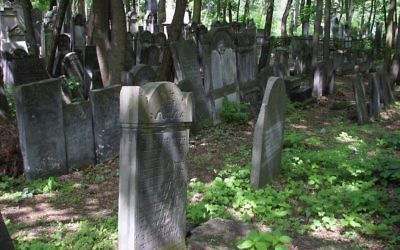Graves at Okopowa Street Jewish Cemetery in Warsaw, Poland.