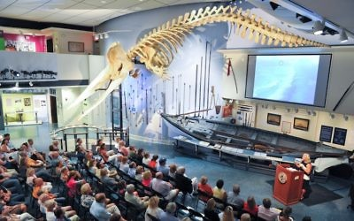 Congregants heard the story of Jonah under a the skeleton of a 46-foot sperm whale at the Whaling Museum in Nantucket. (Picture: the Nantucket Historical Association).