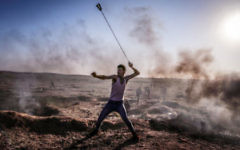 Palestinian demonstrator flings a rock in a slingshot towards Israeli positions - as Hamas have called for another day of mass protests