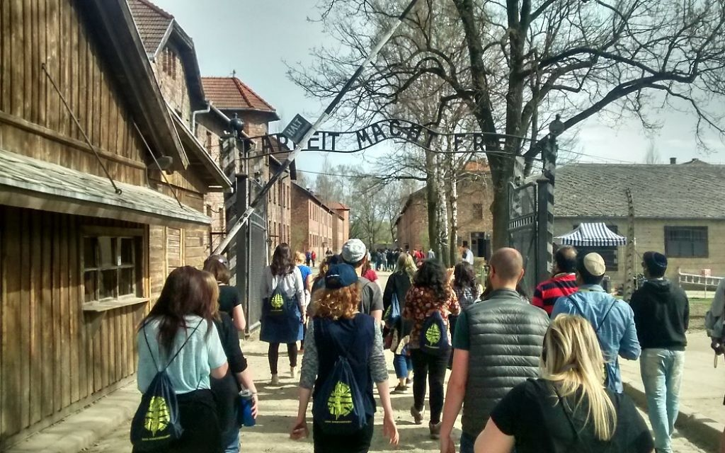 Members of the March of the Living UK Delegation walking through the famous - and notorious - gates at Auschwitz Berkanu