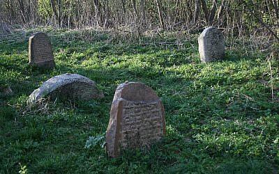 Jewish cemetery in Lyubavichi