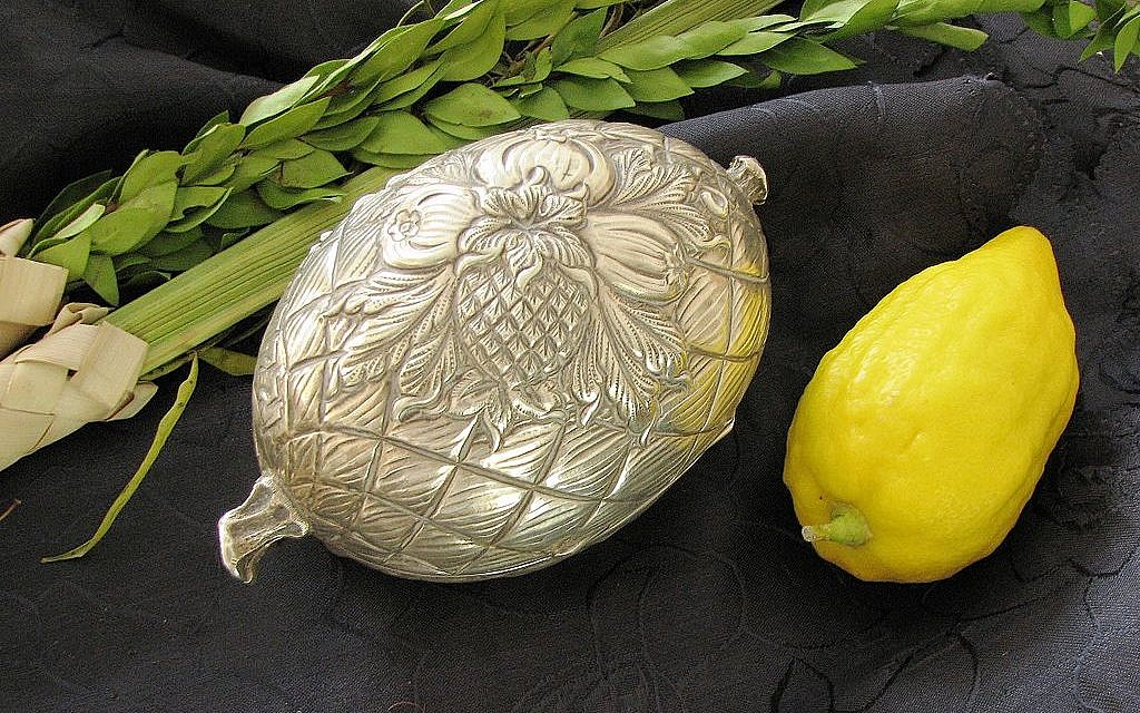 Lulav and Etrog for Sukkot