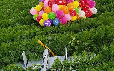 Image posted by the IDF of incendiary balloons that landed in a field in Southern Israel