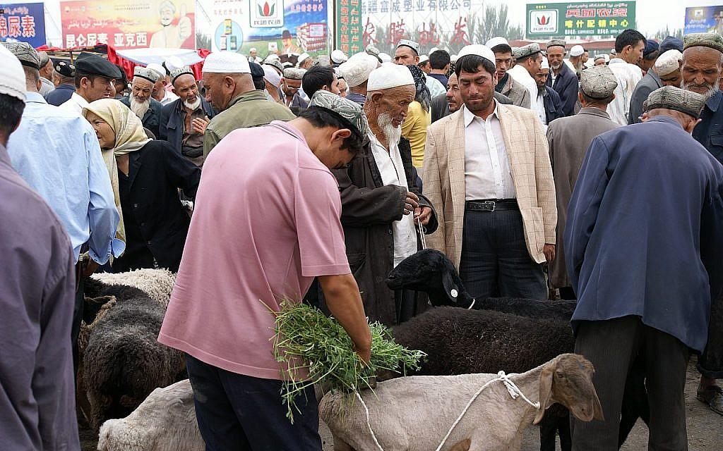 Uyghur people in a livestock market, Kashgar, China. (Wikimedia/ChiralJon_)