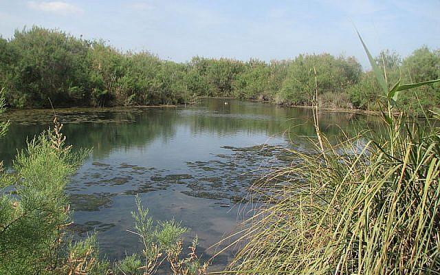 Nahal Taninim in northern Israel (Udi Steinwell/Wikipedia)