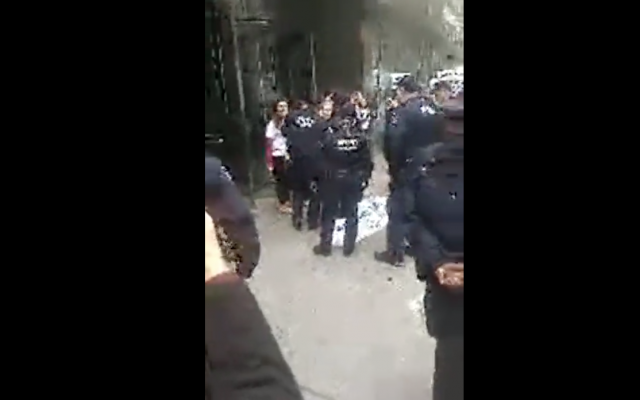 Screenshot shows police detaining Birthright demonstrators in New York