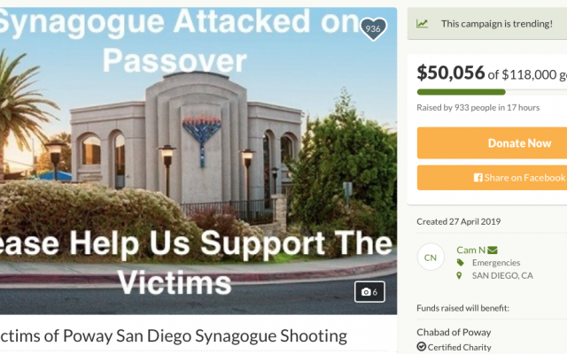 Screenshot from fundraising page
