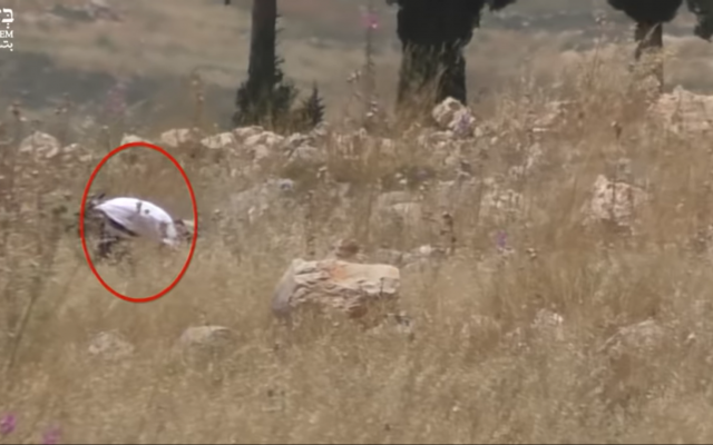Screenshot from B'Tselem's video showing the settler torching the Palestinian-owned field