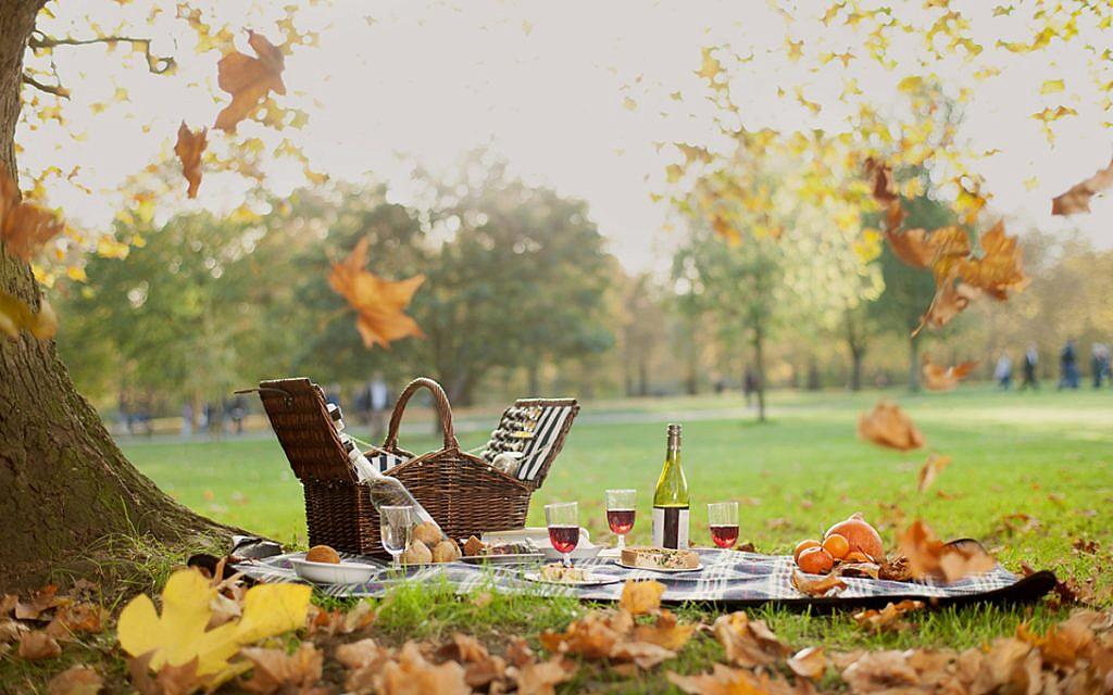Dukes picnic!