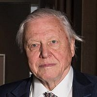 """Sir David Attenborough expressed concern about the political system and said he hoped Europeans remembered the """"lunacy"""" of the 1930s"""