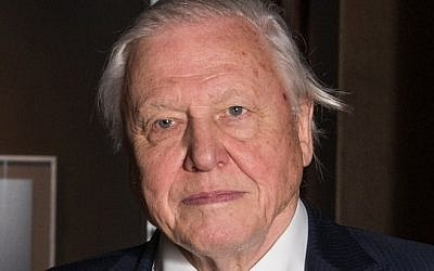 "Sir David Attenborough expressed concern about the political system and said he hoped Europeans remembered the ""lunacy"" of the 1930s"