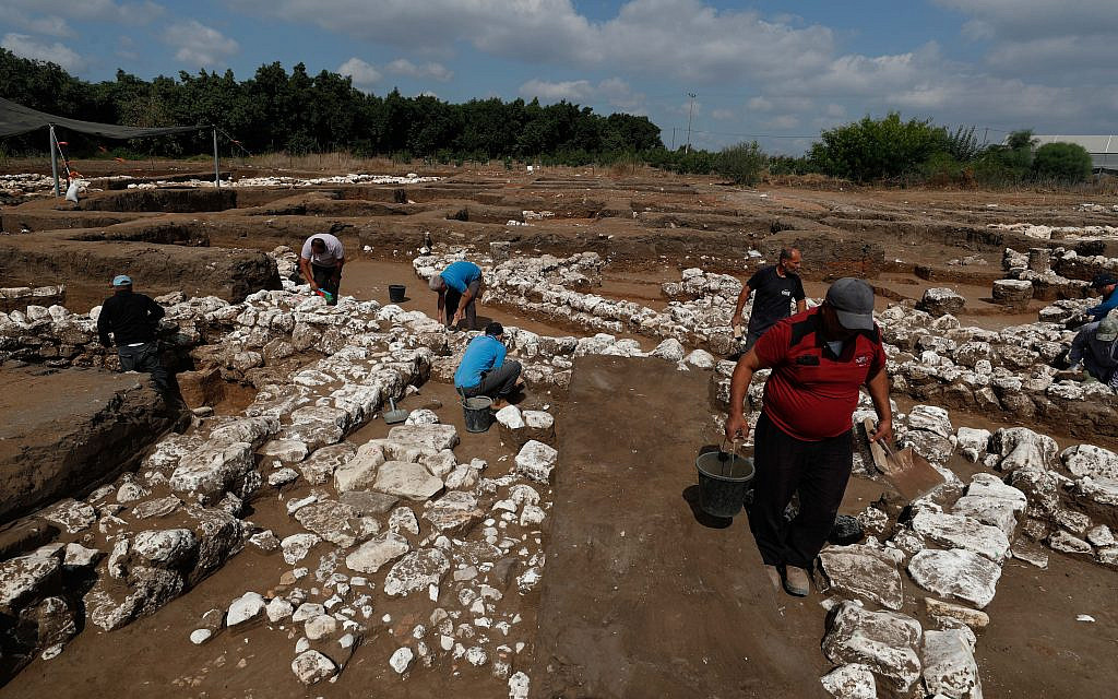 Israeli archaeologists work at the ancient site of En Esur (Ein Asawir) where a 5000-year-old city was uncovered, near the Israeli town of Harish on October 06, 2019. Photo by: JINIPIX