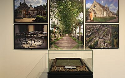 House of Life exhibition reveals more details about those who are buried at Willesden Jewish Cemetery