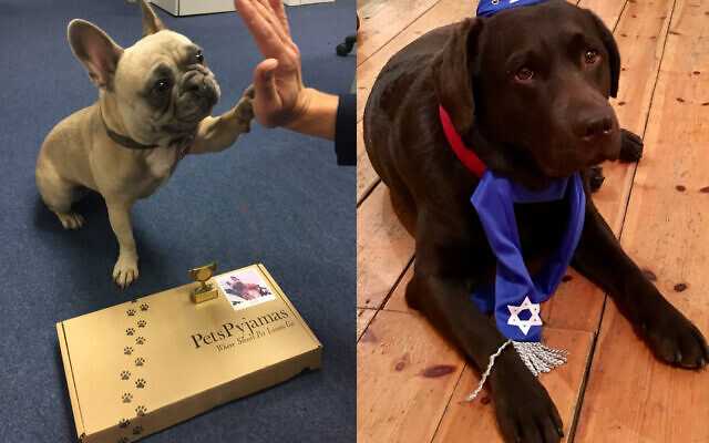 Previous joint winners when Jonathan Ross was the judge: Lili and Lola receiving their prizes!