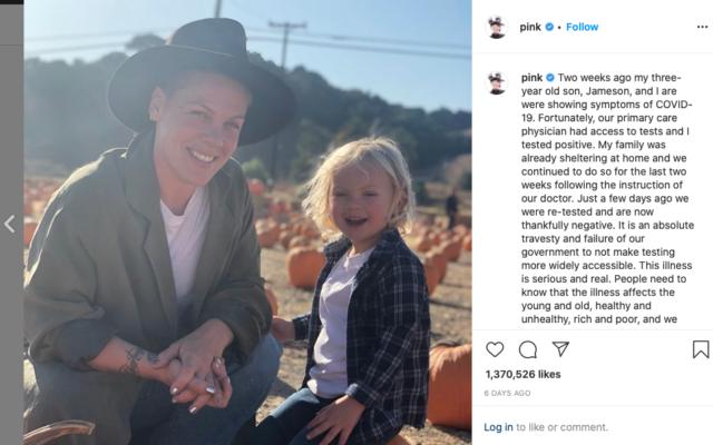 Screenshot from Pink's Instagram