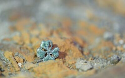 Pendant in the form of a four-leaf clover discovered in a barracks in Birkenau. Photo: Kamil Będkowski
