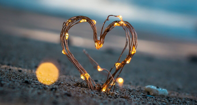 Love (Photo by Steve Halama on Unsplash)