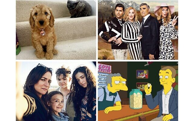 Judge Waffle, Schitt's Creek, Better Things and Phil in the Simpsons