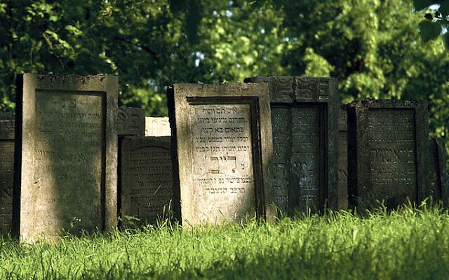 Jewish cemetery in Lezajsk