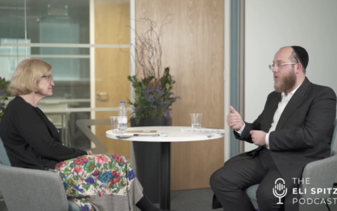 Screenshot from preview video with Amanda Spielman and Eli Spitzer