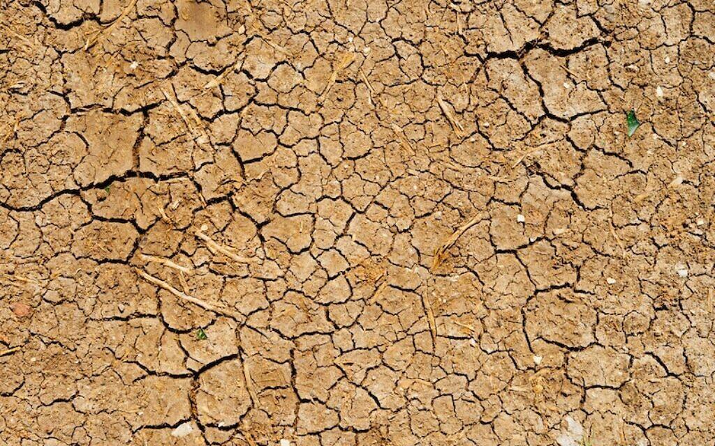 Drought. Photo by Dan Gold on Unsplash