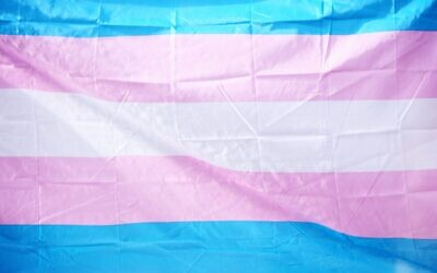 Trans flag (Photo by Sharon McCutcheon on Unsplash)