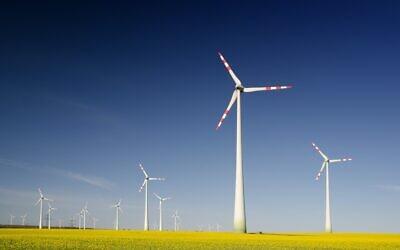 Sustainability (Photo by Zbynek Burival on Unsplash)