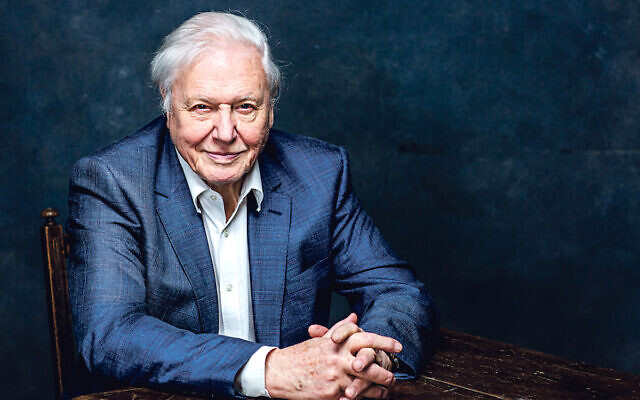 Sir David Attenborough recalled how his parents helped save two Kindertransport refugees during the Second World War. Credit: BBC/Sarah Dunn
