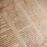 Torah scroll (Photo by Tanner Mardis on Unsplash)