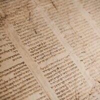 Torah scroll (Photo by Tanner Mardis on Unsplash)