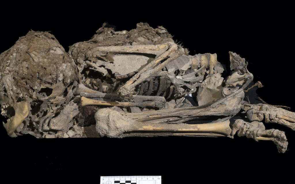 6000 years skeleton. Photo-Clara Amit Israel Antiquities Authority